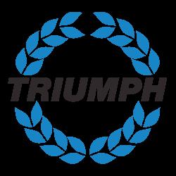 Triumph Stag
